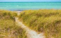 Pathway To Sandspur Beach von John Bailey