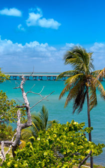 Bahia Honda Lookout by John Bailey