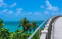 View From The Old Bahia Honda Bridge by John Bailey