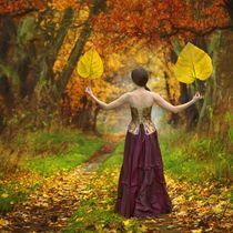 Magic Leaves by Dariusz Klimczak