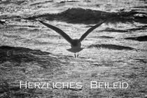 Herzliches Beileid by Beate Zoellner