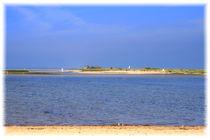 Vogelinsel von mario-s