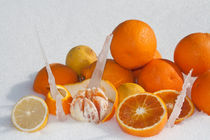oranges and lemons on snow von bruno paolo benedetti
