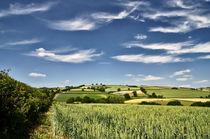 Wispy clouds over caseberry downs von Pete Hemington