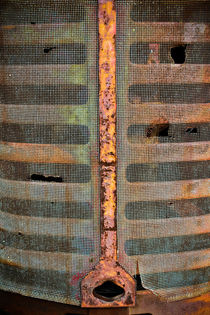 Rusted Grill - Abstract by Colleen Kammerer