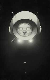 Space Kitty by Lukas Brezak