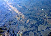 River bed von Ruth Baker