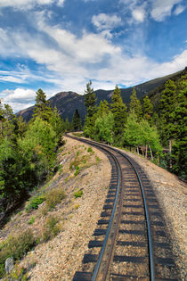 Narrow Gauge Tracks In Silver Country von John Bailey