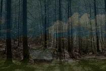 WALDLANDSCHAFT by © Ivonne Wentzler