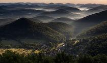 Blick über den Pfälzerwald im Morgenlicht by Walter Layher