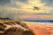 Spitfire MK 9 von bill holkham