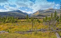 Rocky Mountain National Park Vista von John Bailey