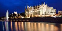 La Seu - Catedral de Mallorca by Moritz Wicklein