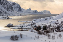 Lofoten - Meet the golden light  von Moritz Wicklein