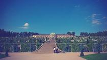 Schloss Sanssouci - Vintage Look von Pascal Betke