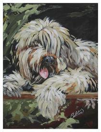 Pet portrait von Robin (Rob) Pelton