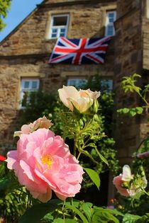 Englands Roses by Michael Beilicke