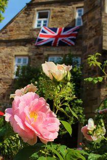 Englands Roses von Michael Beilicke