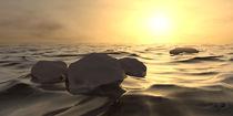 Steine im Wasser vor Sonnenuntergang von dresdner