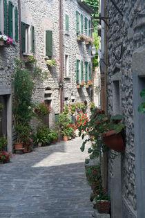 italian medieval village von bruno paolo benedetti