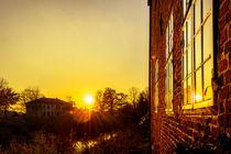 im letzten Sonnenlicht von Thomas Ulbricht