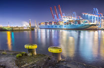 Container Terminal Tollerort by photoart-hartmann