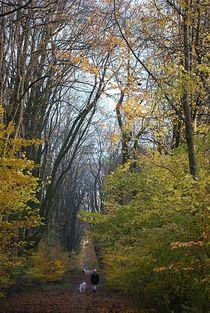 Herbst2014-1