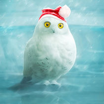 Xmas-snowy