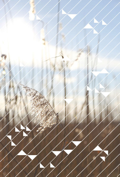 2014-11-07-holidaze-6