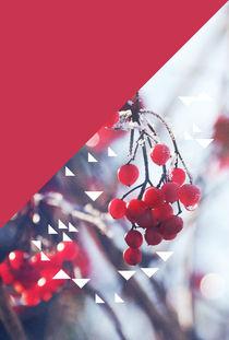 red berry & triangle von Eva Stadler
