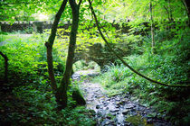 Alte Steinbrücke im Wald, stone brigde in the wood von Sabine Radtke