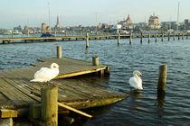 Rostock am Warnowufer II von Sabine Radtke
