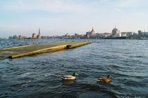Rostock am Warnowufer I von Sabine Radtke