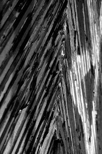 Structures XVI von joespics