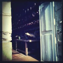 Heimlicher Blick in die Küche des Herrenhauses von flo reichART