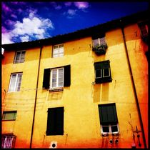 Hausfassade in Lucca by flo reichART