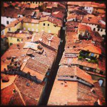Blick auf Lucca von einem Turm von flo reichART