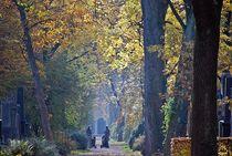 Herbst2014-29