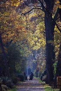 Herbst2014-30