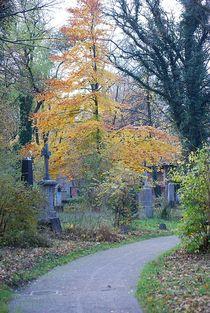 Herbst2014-38
