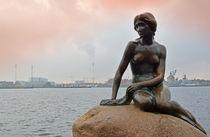 die kleine meerjungfrau von sonja hofmann
