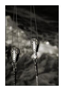 Big game fishing equipement von Brian Grady