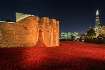 Tower of London Poppies von James Rowland