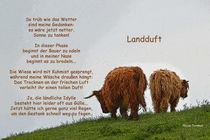 Landduft by Nicola Turnbull