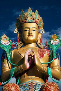 Maitreya Buddha, Nubrah Valley, Ladakh von studio-octavio