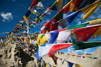 Buddhist prayer flags, Ladakh, India by studio-octavio