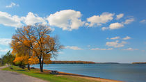 Middle Of Fall At Cass Lake von John Bailey