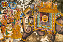 Indian Elephant by Michael Lindegger