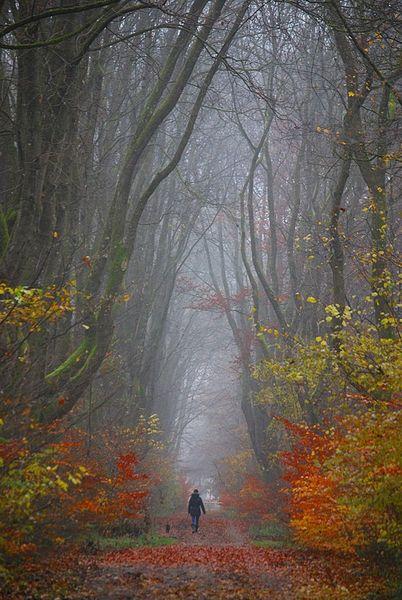 Herbst2014-101