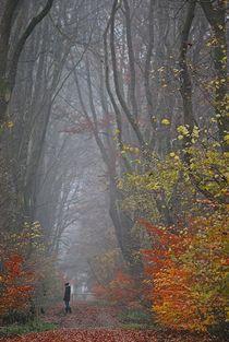 Herbstnebelwald... 2 by loewenherz-artwork
